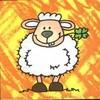 pti-gran-mouton